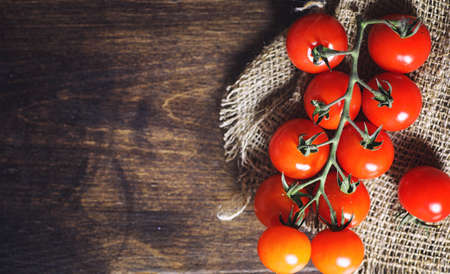 Branch with fresh cherry tomatoes. Ripe red tomatoes.