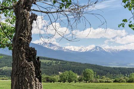 mountain landscape, Rhodope Mountains, Bulgaria