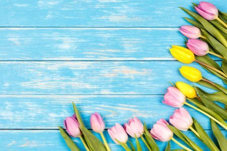 View of bunch of yellow and pink tulips lying on a blue wooden background
