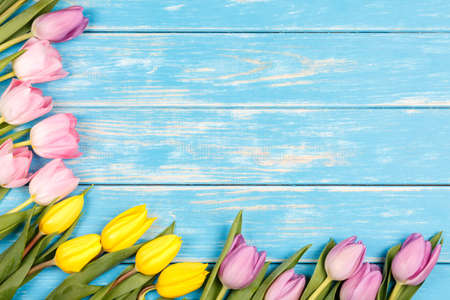 View of bunch of yellow and pink tulips on a blue wooden background