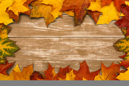 View of autumn maple leaves on brown wooden background