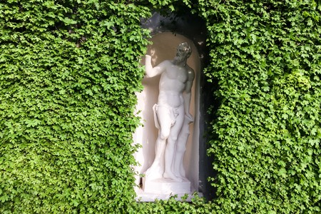 hedge with an antique statue, hedge with an antique statue in a niche, curling ivy