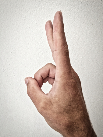 white mans palm, outstretched palm, hand on a white background, back of the hand, part of the body, part of the hand, hair on the hand, white skin, outstretched palm, hand on a white background, part of the body, part of the hand, white skin, two fingers, show the amount, in the amount of two, hand gesture