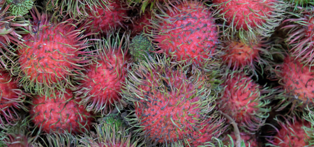 A large number of rambutans as a background. Unusual tropical fruits.