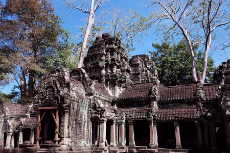 The ruins of the temple complex of Ta Prohm in Cambodia. Architectural heritage of the Khmer Empire. A masterpiece of world architecture.