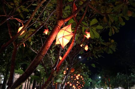 Decorative lanterns in the shape of stars hang on trees at night.