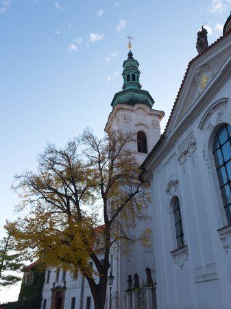 Yellow autumn tree near the Strahov Monastery in Prague.