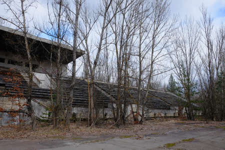 An abandoned football stadium in Pripyat. Overgrown with trees ruins of the stadium.