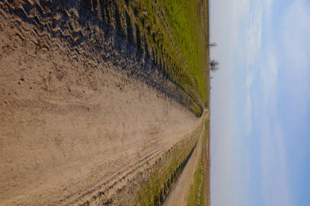 A narrow dirt road in an evening field. Clear blue sky over the field.