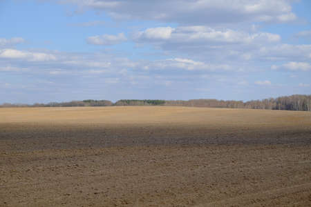 A plowed agricultural field. Blue sky over a farm field.