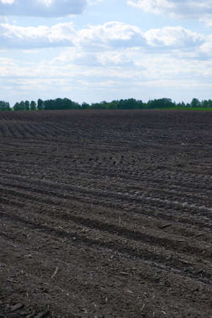 A plowed agricultural field. Beautiful clouds in the blue sky. Agricultural field, landscape.