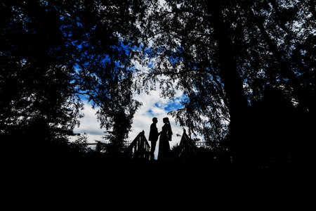 silhouettes of a wedding couple of the bride and groom holding hands
