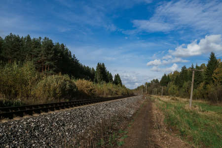 Railway among the forest under the blue sky