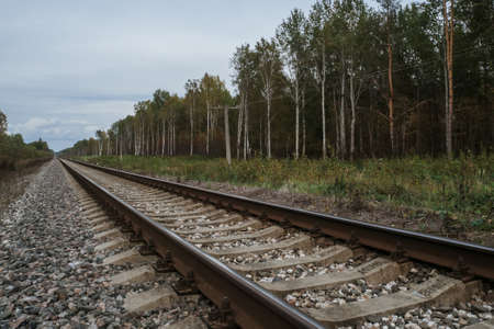 old railway in forest on cloudy autumn