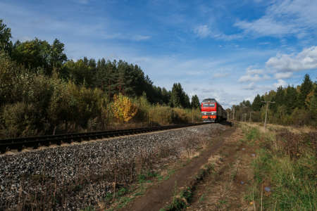Red old train rides by rail among the forest in summer