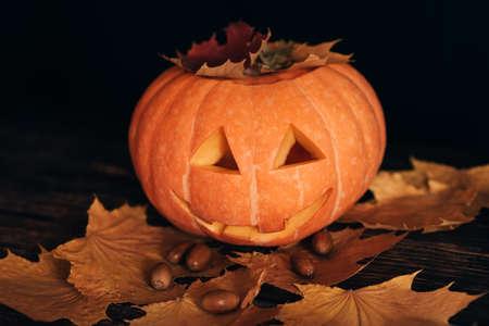 Halloween orange pumpkin with maple leaves and acorns on dark background Banco de Imagens
