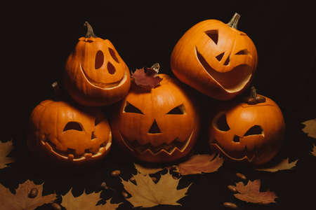 pumpkins with scary carved faces for Halloween and maple leaves with acorns