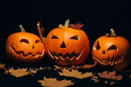 three orange pumpkin with maple leaves and acorns for Halloween
