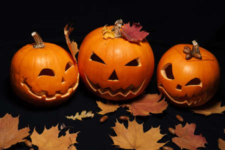 decor of pumpkins and maple leaves with acorns for Halloween