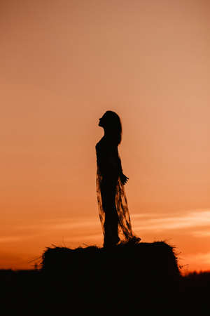 Silhouette of a sexy nude girl in underwear in a field in summer at sunset in nature