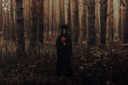 witch in a black costume performs dark spells with candles Фото со стока