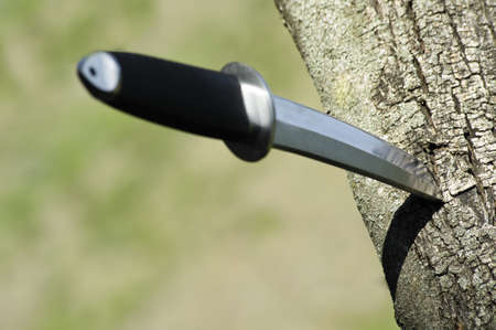 strenght: Tanto knife stuck in a tree