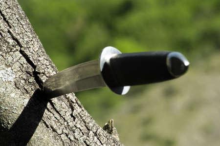 wakizashi: Tanto knife stuck in a tree