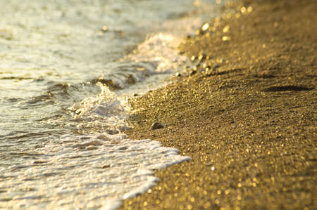 Detail of a sandy sea beach in the sunset