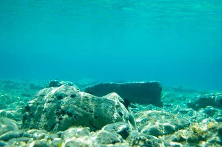 Ocean bottom with sun rays