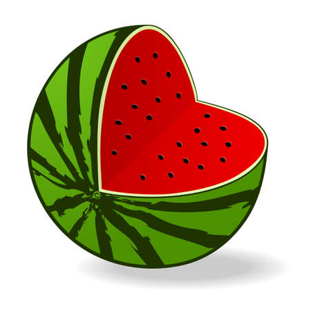 Fresh juicy watermelon - vector illustration Illustration