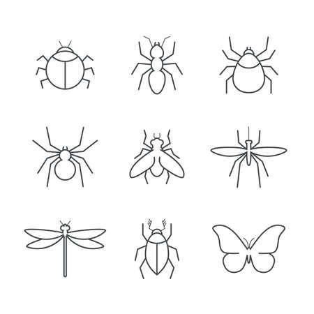 moscerino: Insect semplice set di icone vettoriali - bug, formica, tick, ragno, volare, zanzara, scarabeo, libellula e la farfalla
