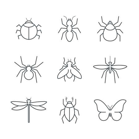 Insect simple vector icon set - bug, ant, tick, spider, fly, gnat, beetle, dragonfly and butterfly
