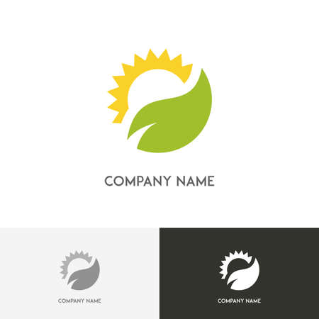 Nature logo - fresh green leaf and the sun on the white background