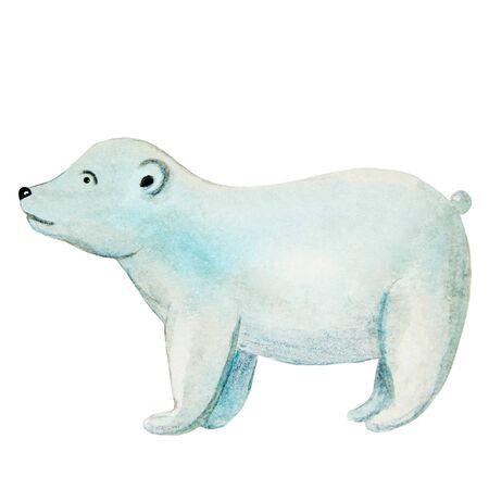 polar bear in watercolor cartoon style