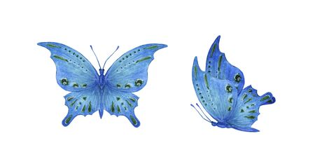 set blue tropical butterfly with green spots watercolor isolate on white background Фото со стока