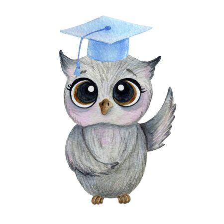 smart gray owl in a blue hat on a white background with watercolor in cartoon style