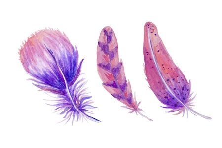 Easter watercolor set with feathers lilac pink, blue color