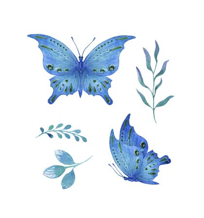 set blue tropical butterfly with green spots watercolor isolate on white background