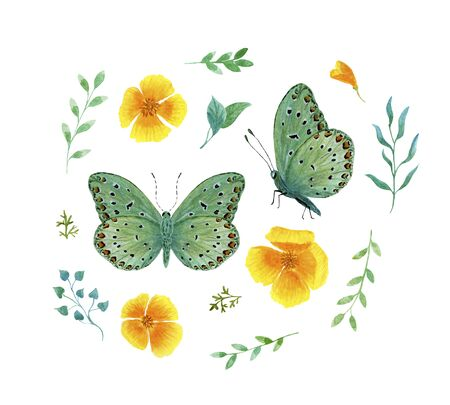set green tropical butterfly with red spots watercolor on a white background Фото со стока