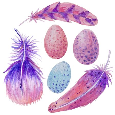 Easter watercolor set with eggs feathers lilac pink color