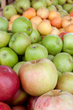 Bunch of different organic apple types displayed on sale on farmer's market stand show richness and diversity of colors, tastes and shapes among various kinds 免版税图像