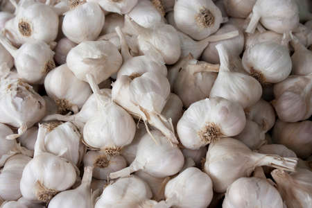 Bunch of organic garlic bulbs displayed on sale on farmer's market stand in Serbia