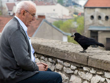 Belgrade, Serbia -  April 9, 2019: Lonely senior man sitting alone on a city bench and looking at crow or raven bird looking back