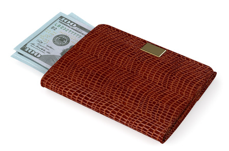 investmen: brown leather purse with money isolated on white background Stock Photo