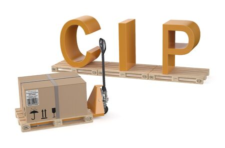 cip: CIP concept isolated on white background