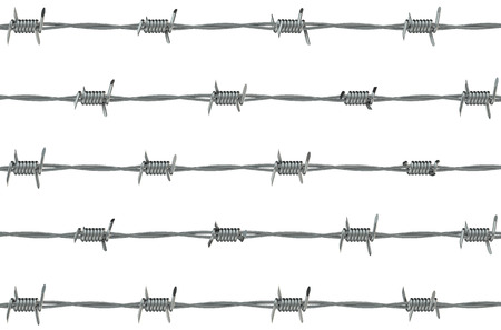 fencing wire: steel barbed wire on white  background