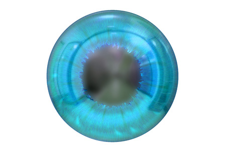 front of the eye: eye with blue iris isolated on white background