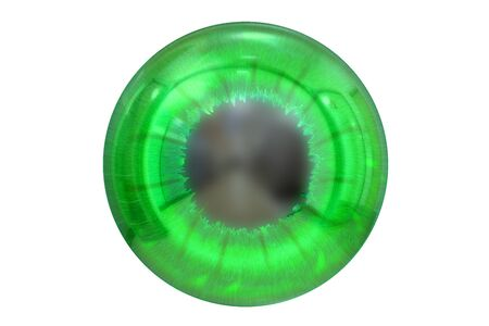 front of the eye: eye with green colored iris isolated on white background
