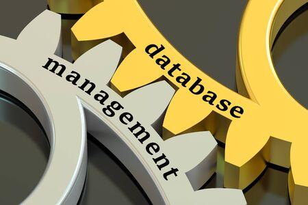 database management: Database Management concept on the gearwheels