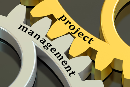 management concept: Project Management concept on the gearwheels Stock Photo